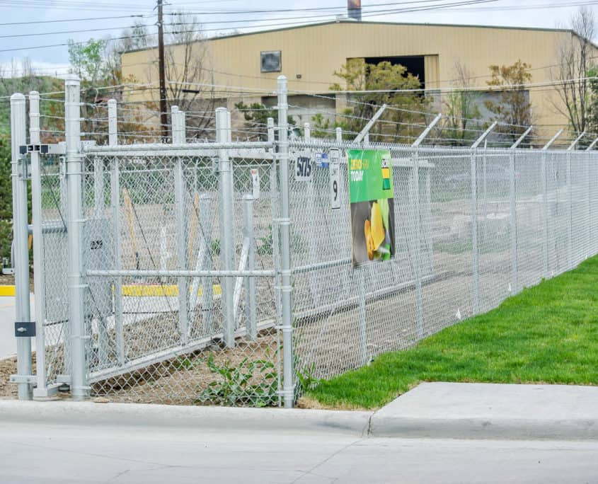 Ideal Fencing - Chainlink Fencing-4851