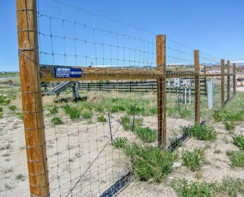 Ideal Fencing - Field Fencing-4904