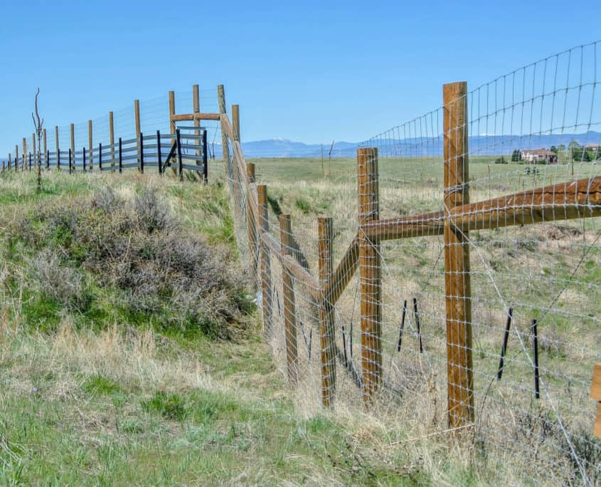 Ideal Fencing - Field Fencing-4911